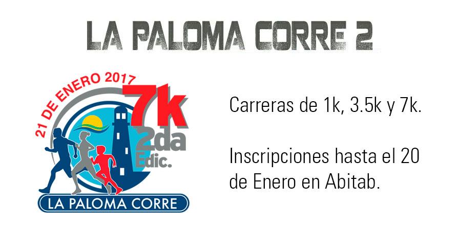 La Paloma Corre - Segunda Edición